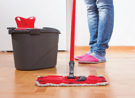 Which Is The Best Mop For Hardwood Floors Reviews 2019